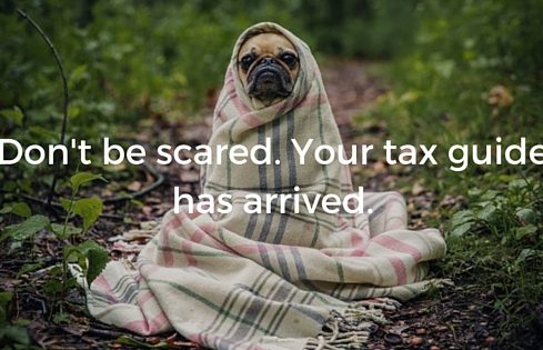 Dog wrapped in a blanket - Upstart Personal Loans
